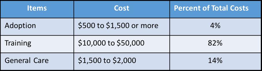 Service Dog Training Cost